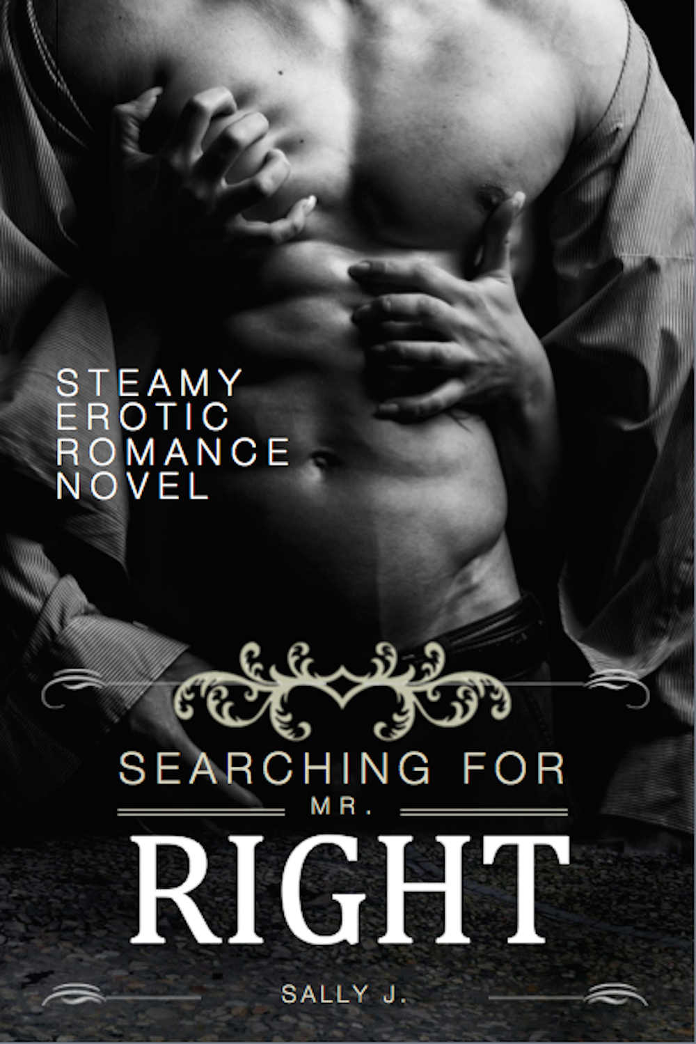 Searching For Mr. Right: Steamy Erotic Romance Novel (Erotic Romance, Romance, Love Affair, Love Story) by Sally J.