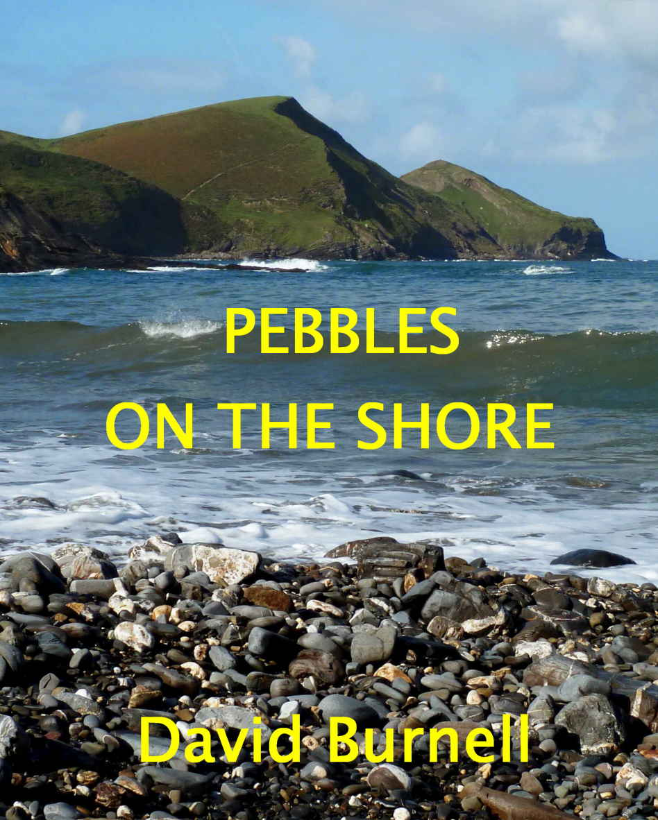 Pebbles on the Shore Kindle Edition by David Burnell