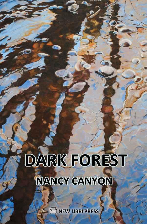 A eBook of Short-short Fiction by New Libri Press