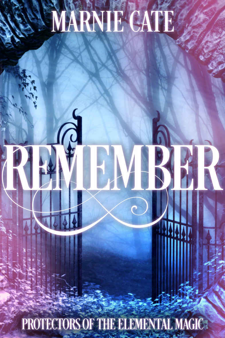 Cover image for Remember (Protectors of the Elemental Magic)