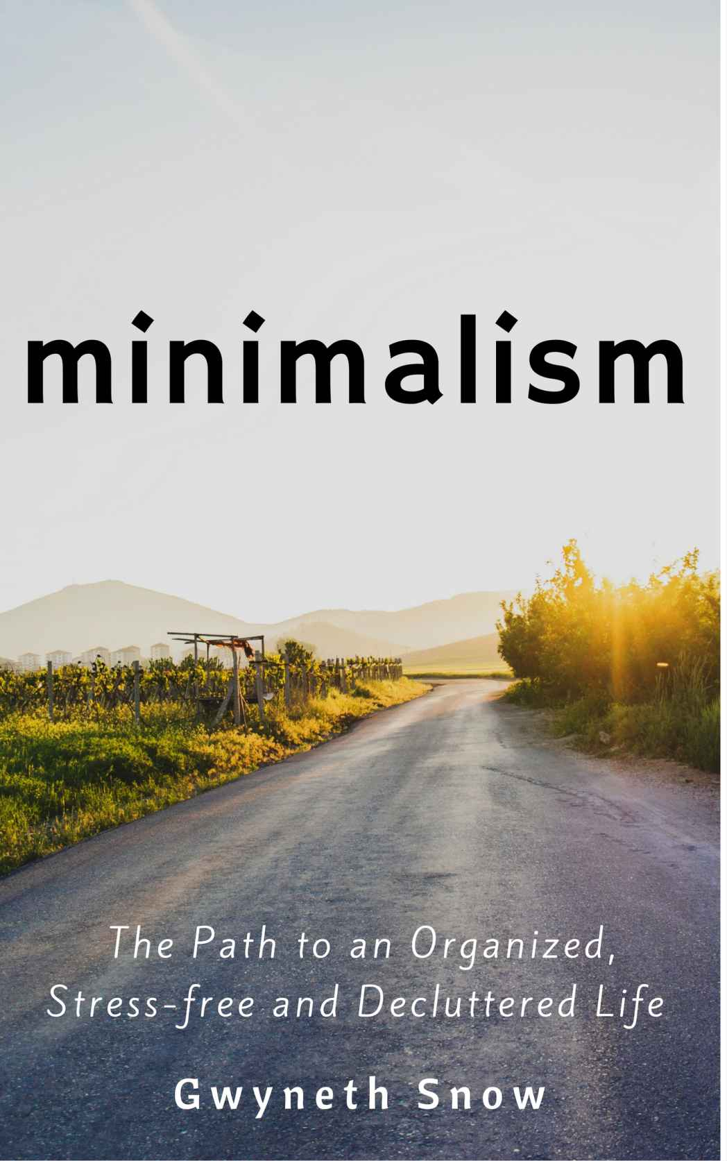 Gwyneth Snow's Minimalism The Path to an Organized Life Kindle eBook