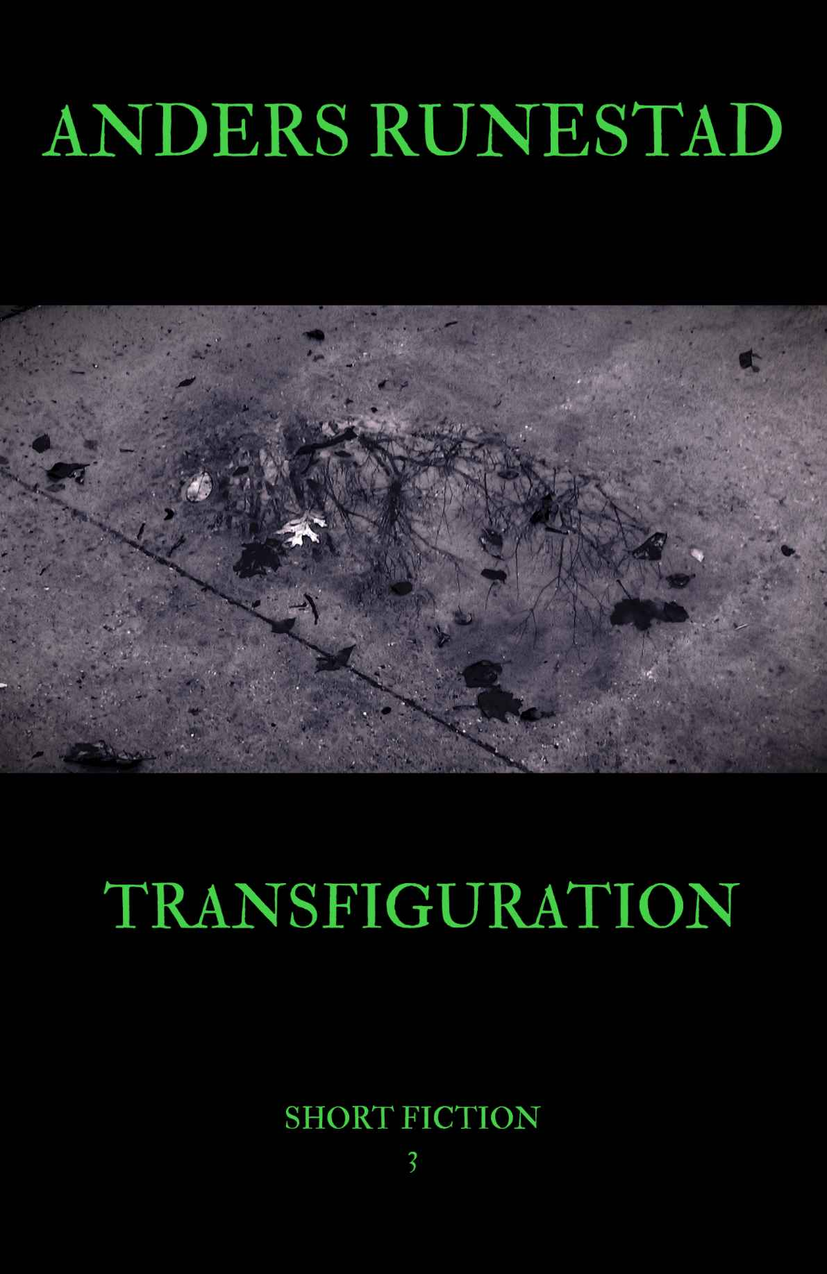 (29) Transfiguration